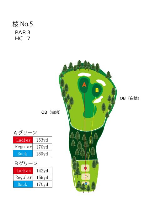 HOLE NO.5(桜)