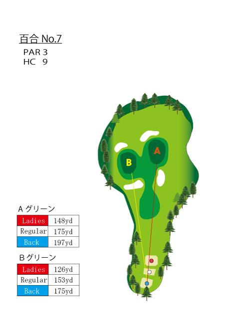 HOLE No.7(百合)